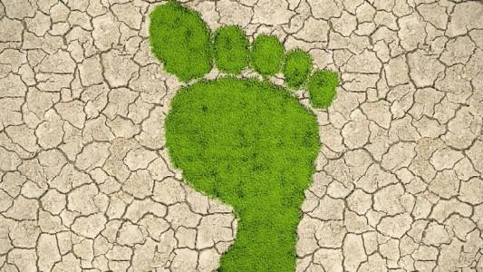 Was bedeutet Biodiversität?