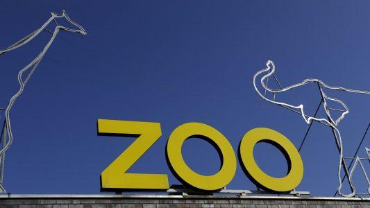 Der Kölner Zoo ist immer toll. Helenas Lieblingsort in Köln ist der Elefantenpark. (Foto: dpa)