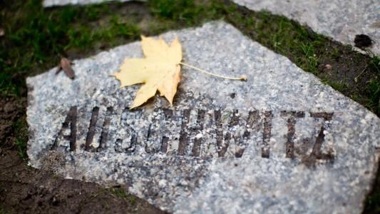 Im Konzentrationslager Auschwitz wurden vor langer Zeit viele Menschen umgebracht. (Foto: dpa)