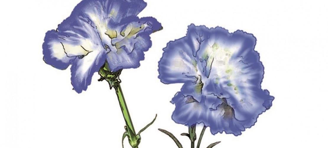 Mit ein bisschen Tinte... Wird aus einer Schnittblume mit hellen Blüten eine Blume mit dunklen Blüten. (Foto: Verlag)