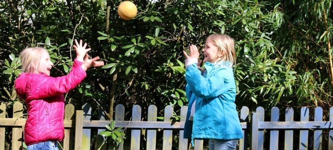 Es muss nicht immer ein richtiger Ball sein. Es macht auch Spaß, mit Melonen oder Äpfeln fangen zu spielen. Und danach könnt ihr die «Bälle» dann gleich essen. (Foto: dpa)