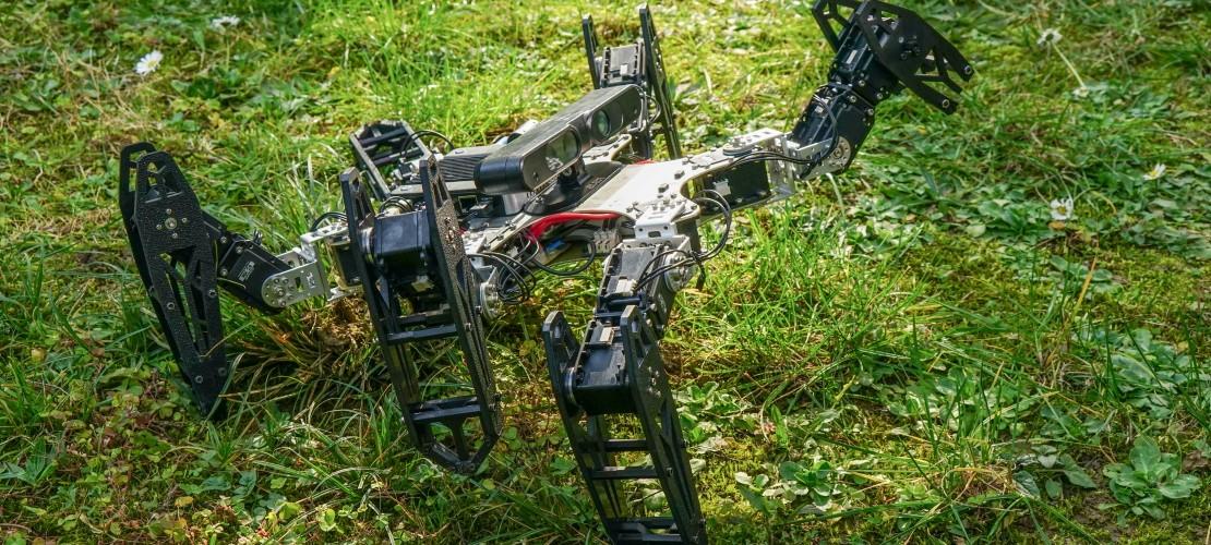 Ein Roboter, der humpelt