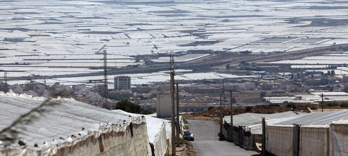 Das Weiße sind Gewächshäuser in Spanien. Hier wird Gemüse angebaut. Dafür braucht es viel Wasser. (Foto: dpa)