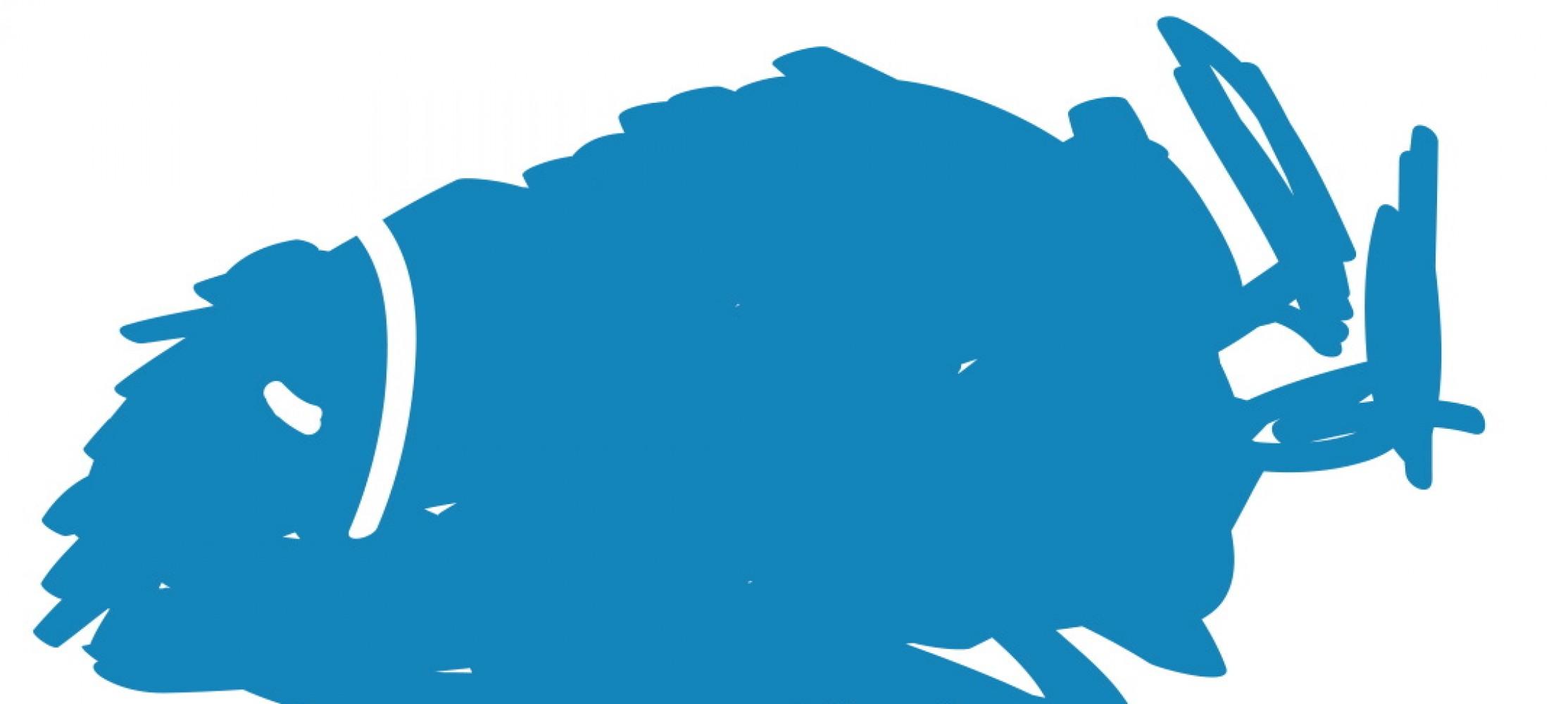 Ist witze was blau Was ist