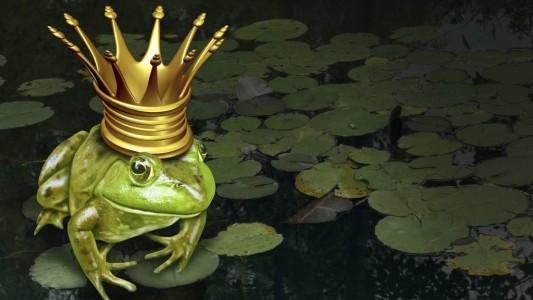 Nur eines von vielen Märchen: Der Froschkönig. (Foto: thinkstock)