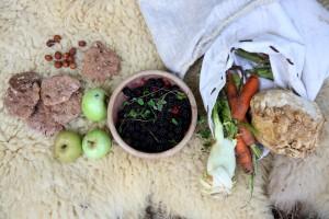 Äpfel, Karotten, Sellerie - das haben schon doe Menschen vor 7000 Jahren gegessen