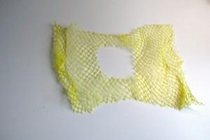 Tintenfisch2
