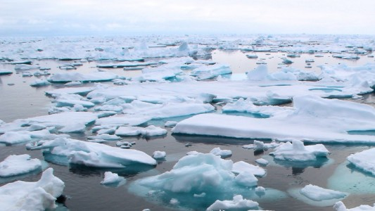 Auf der Erde wird es immer wärmer. Das Eis in der Arktis schmilzt. (Foto: dpa)
