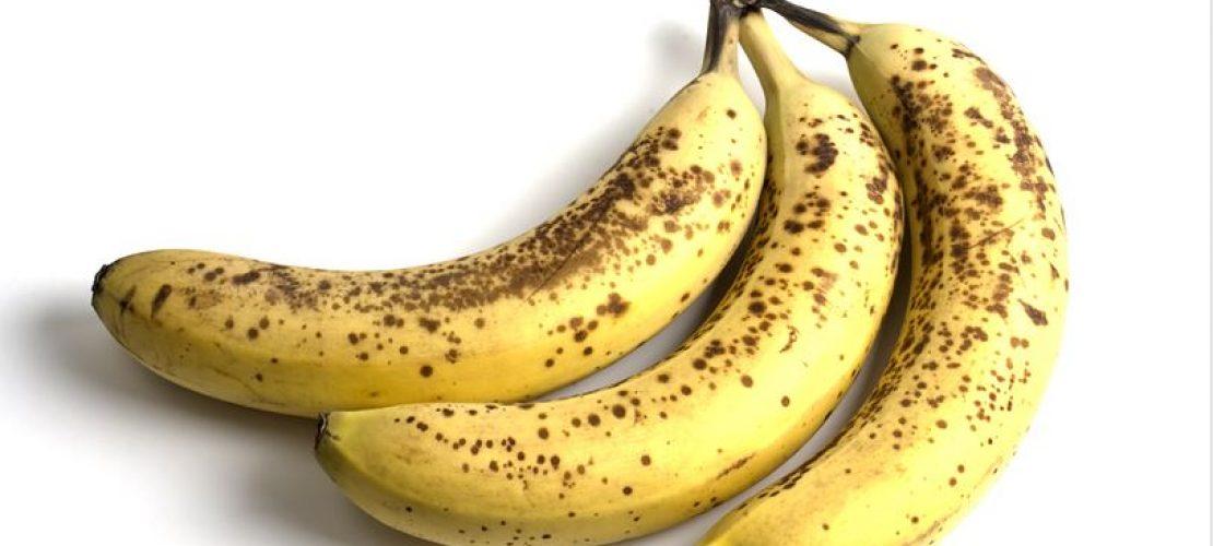 Bananen sind in Gefahr
