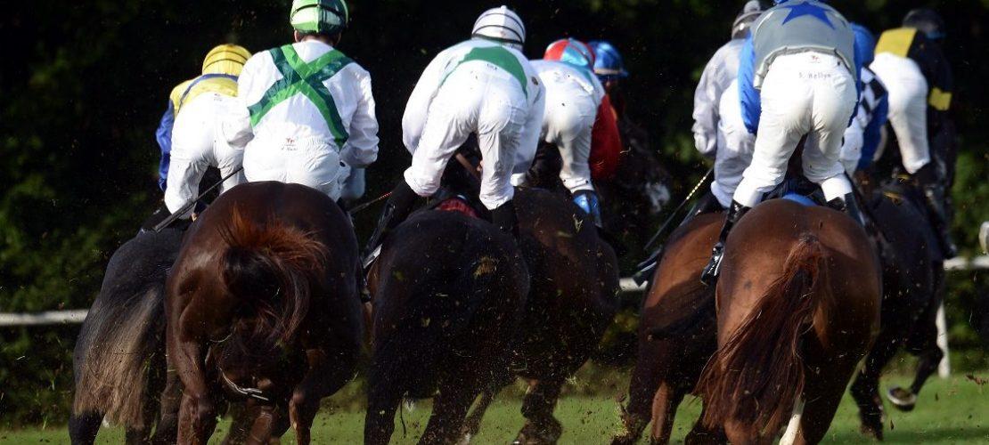Raus hier: Duda beim Pferderennen