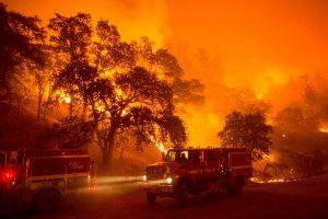 Auch im Westen der USA fangen die Wälder oft Feuer. (Foto: dpa)