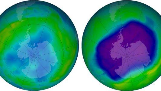 Wofür ist die Ozonschicht da?
