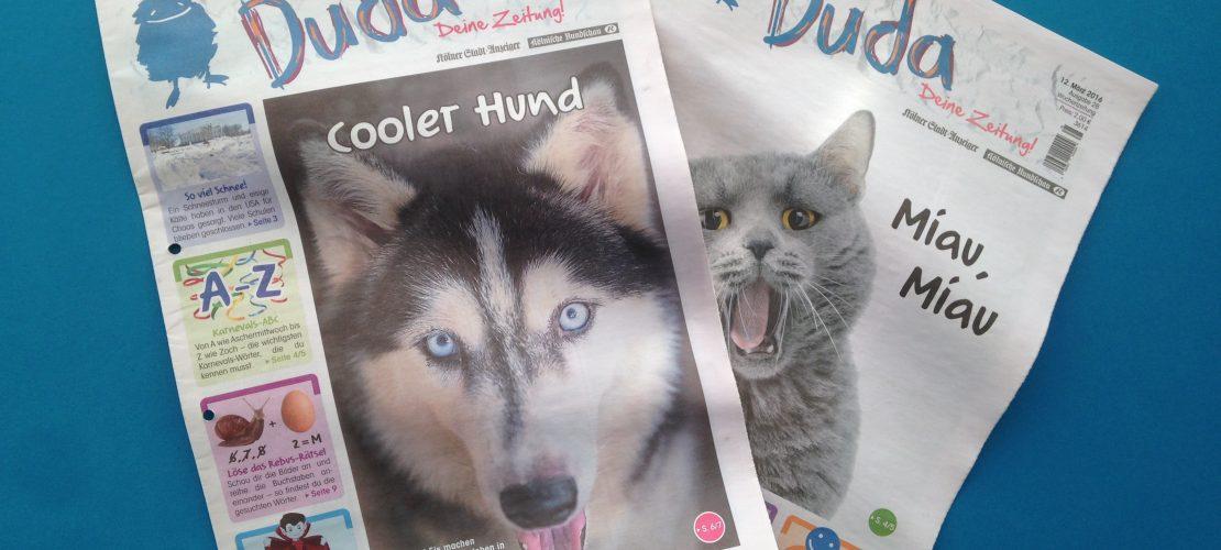 Ihr habt gewählt: Cooler Husky auf Platz eins