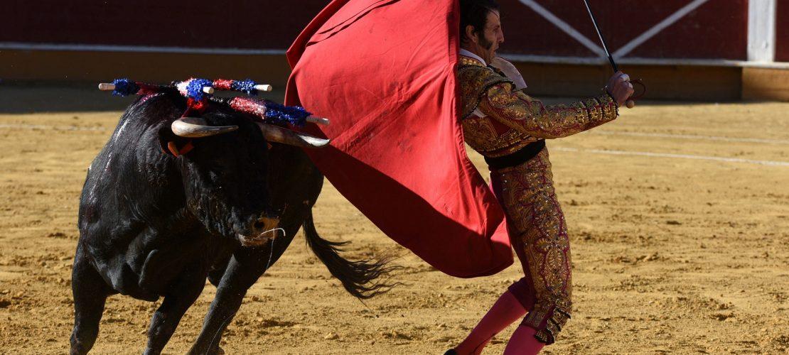 Bei Stierkämpfen darf kein Blut mehr fließen