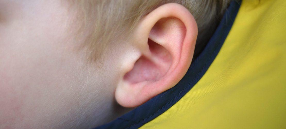 Klicktipp: Errätst du das Geräusch?