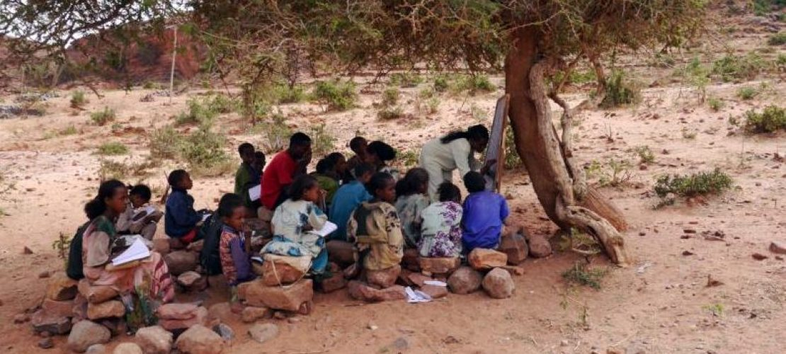 Baumschule statt Klassenzimmer