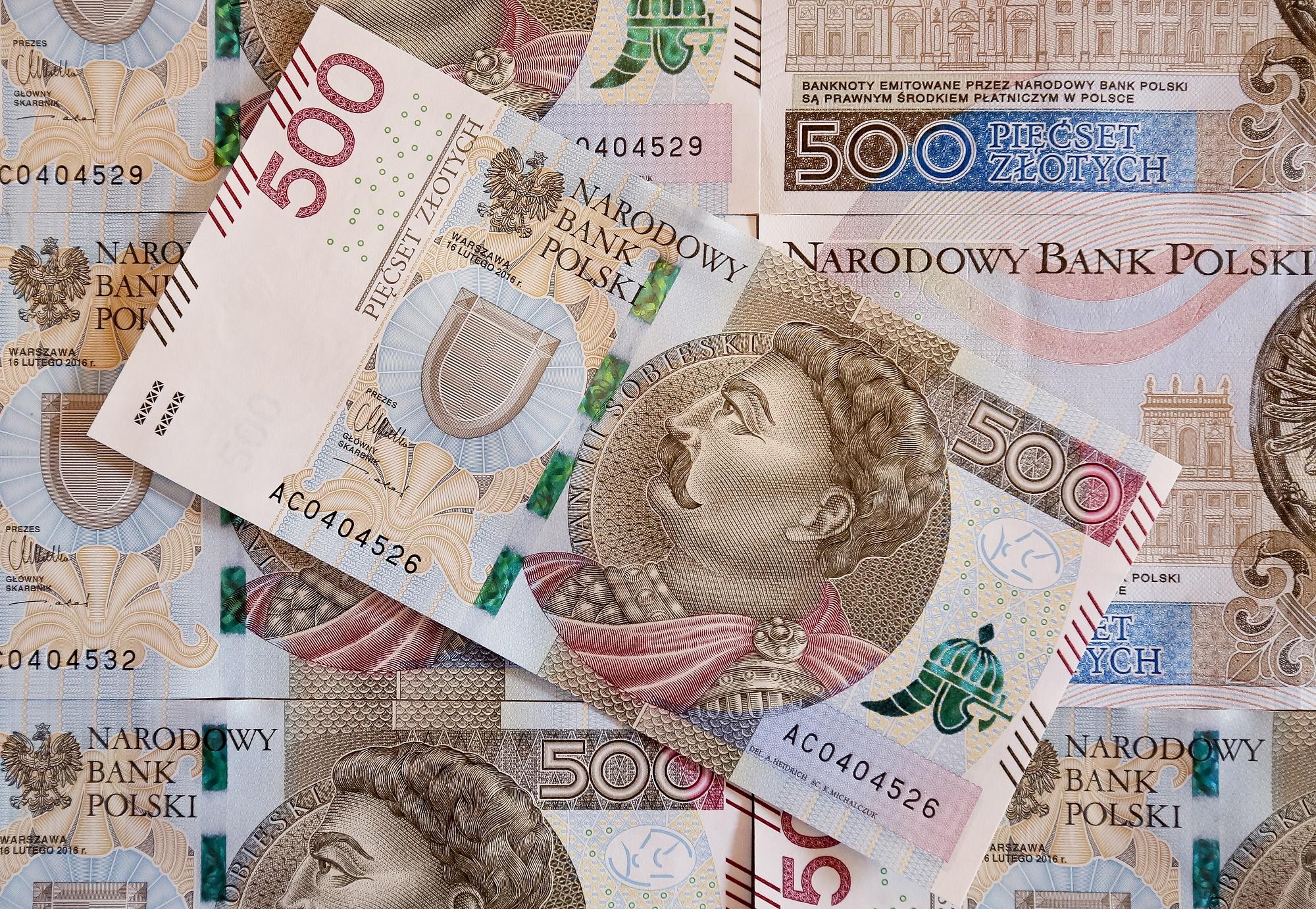 30 Zloty Euro