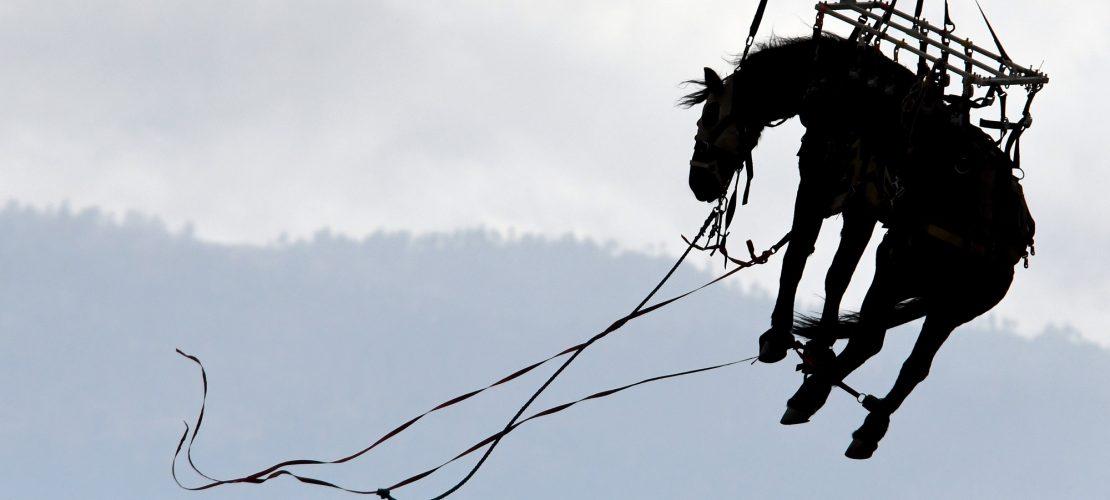 Pferd fliegt durch die Luft