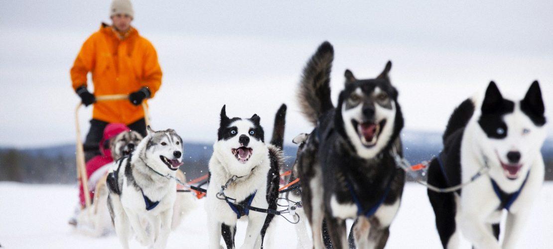 Großer Feiertag für Finnland