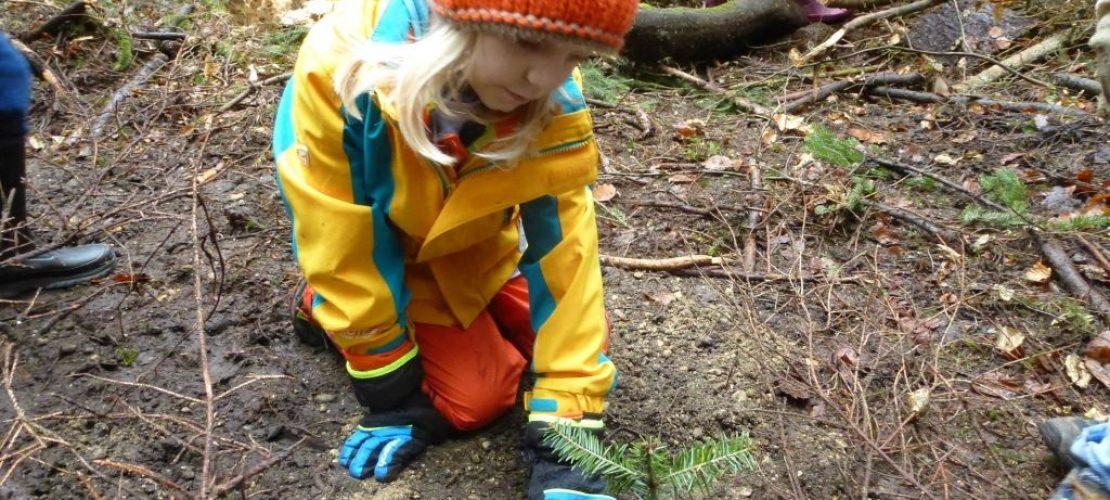 Ein Mädchen pflanzt einen kleinen Baum. Plant for Planet organisiert viele Veranstaltungen, bei denen Kinder mehr über Bäume und das Klima erfahren. (Foto: Plant for the Planet)