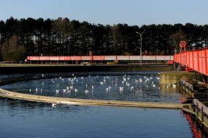 Das Wasser im Nachklärbecken sieht fast schon wieder sauber aus. Hier sinkt der Schlamm zu Boden. (Foto: Rakoczy)