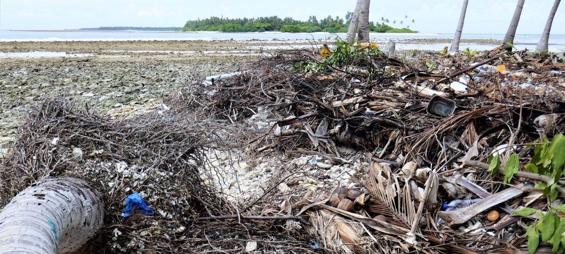 Der starke Regen spült die Erde der Malediven weg. So finden die Palmen keinen Halt mehr und fallen um. (Foto: Peter Pauls)