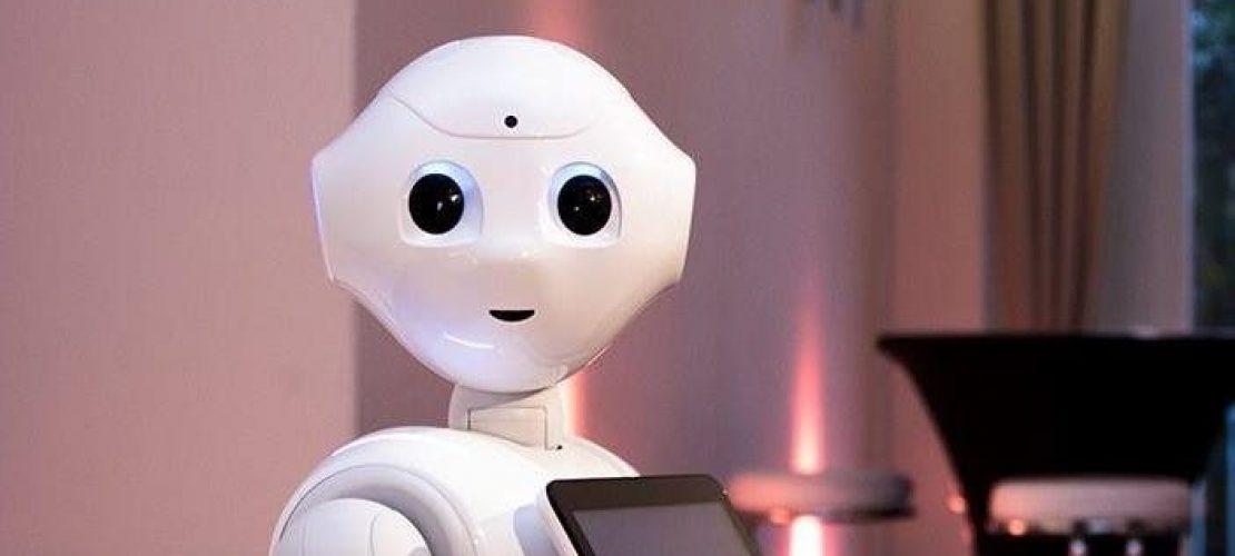 """""""Kann es gefährlich werden, wenn jeder einen Roboter hat?"""""""