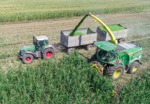 Bauern können mit vielen Dingen Geld verdienen. Dieser Mais kommt in einer Bio-Gas-Anlage. (Foto: Patrick Pleul/ZB/dpa)