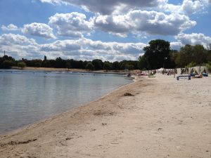 Der Blackfoot Beach ist Medis Lieblingsort in Köln. (Foto: Medi)