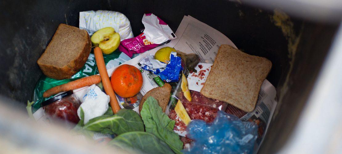 Unterwegs im Müll gelandet