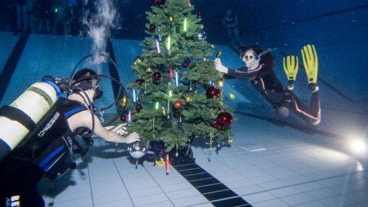Außergewöhnliche Weihnachtsfeier