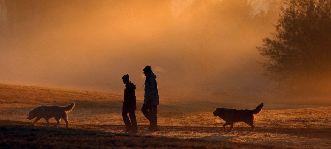 Das Gewissen der Natur – der internationale Umwelttag