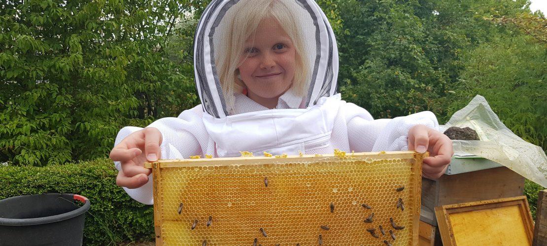 Milla nimmt dich mit zu den Bienen