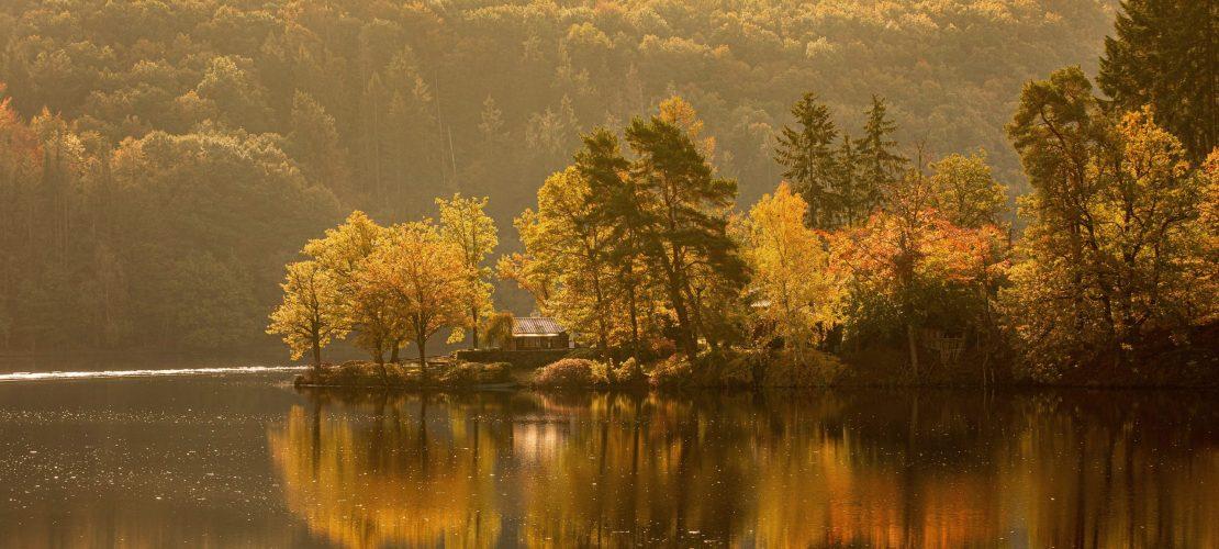 24 Türchen voller Natur – Dudas Adventskalender