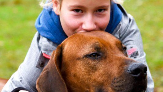 So gehen Kinder richtig und gut mit Hunden um