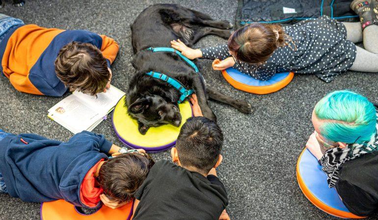 Lesen lernen mit Hund