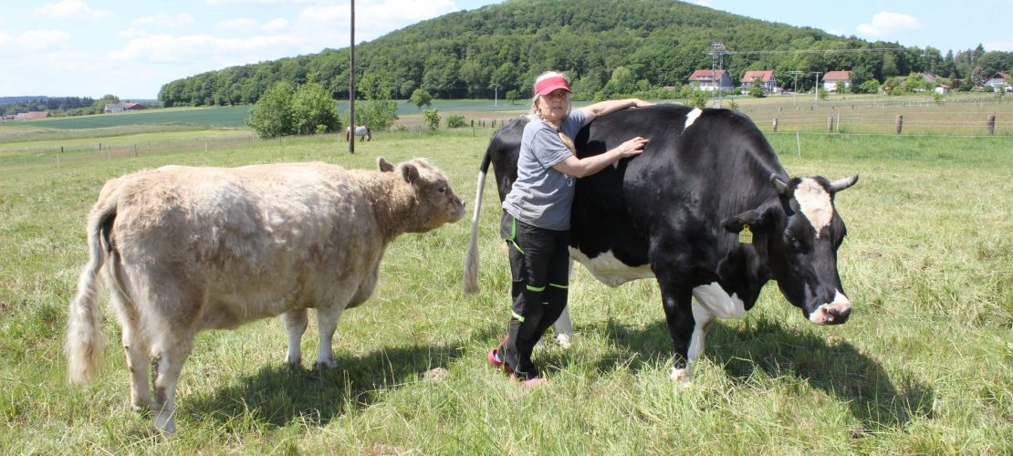 Ein Altersheim für Tiere