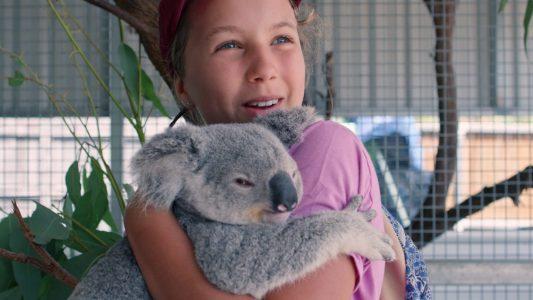 Junge Koala-Flüsterin