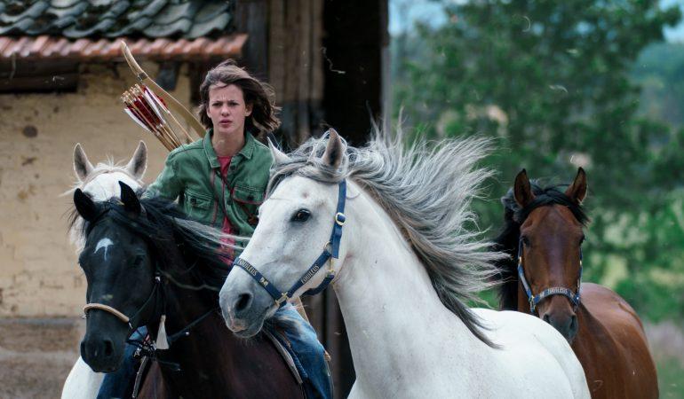 Pferde, Spannung, Freunde